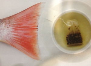 fish and green tea